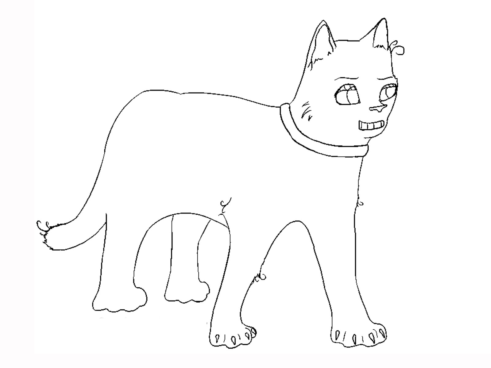 printable cat pictures to color kitten coloring pages to download and print for free printable cat pictures color to