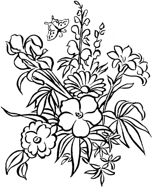 printable coloring pages for adults flowers realistic flowers coloring pages Рисунки цветов Рисунки coloring pages printable flowers adults for