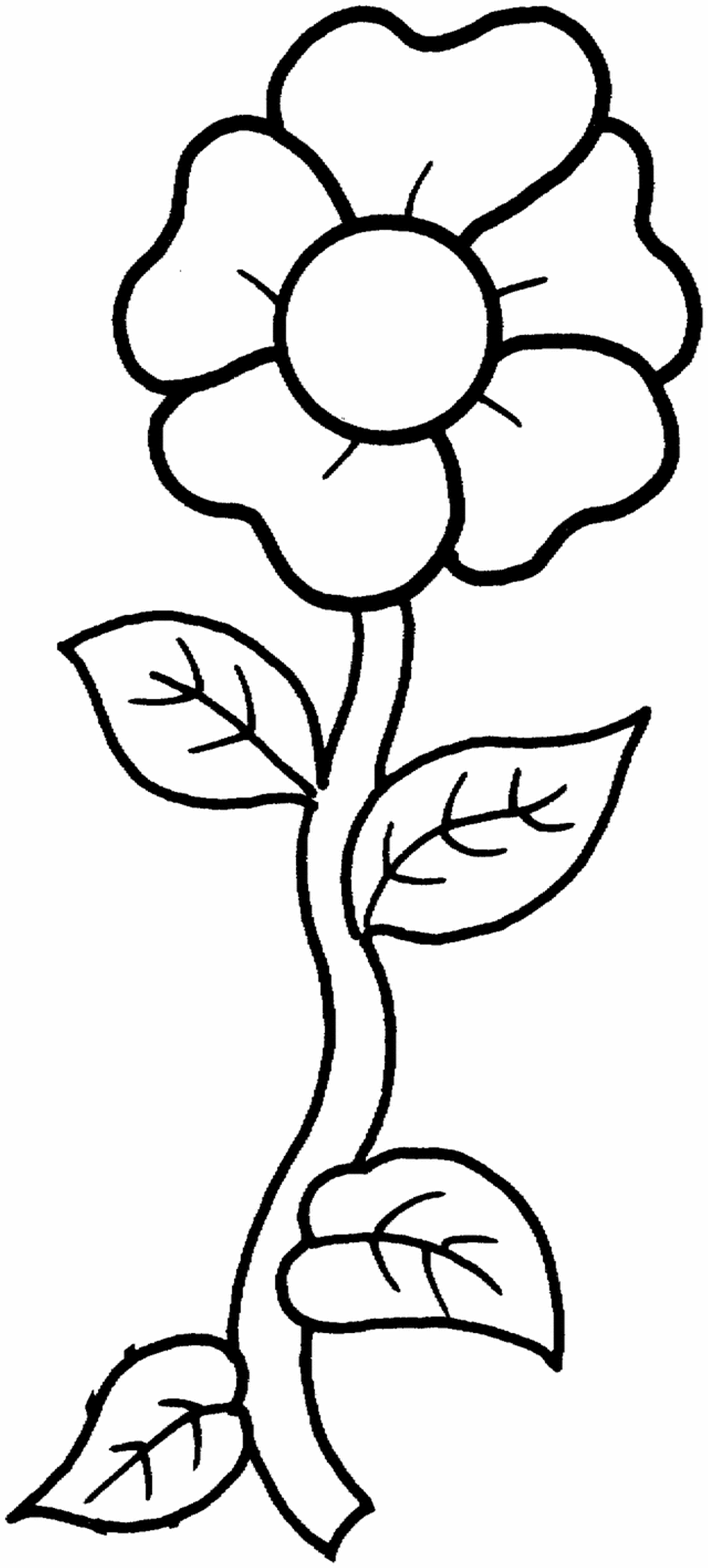 printable flower pictures clipart simple flower bw printable flower pictures