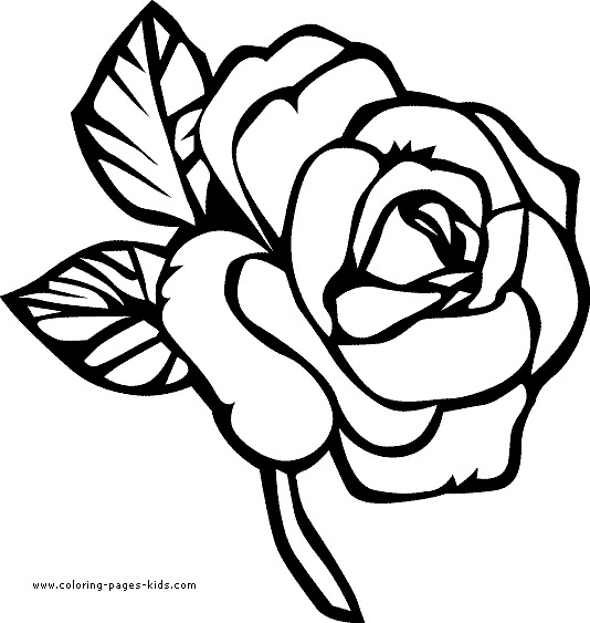 printable flower pictures flower coloring pages for adults best coloring pages for pictures printable flower