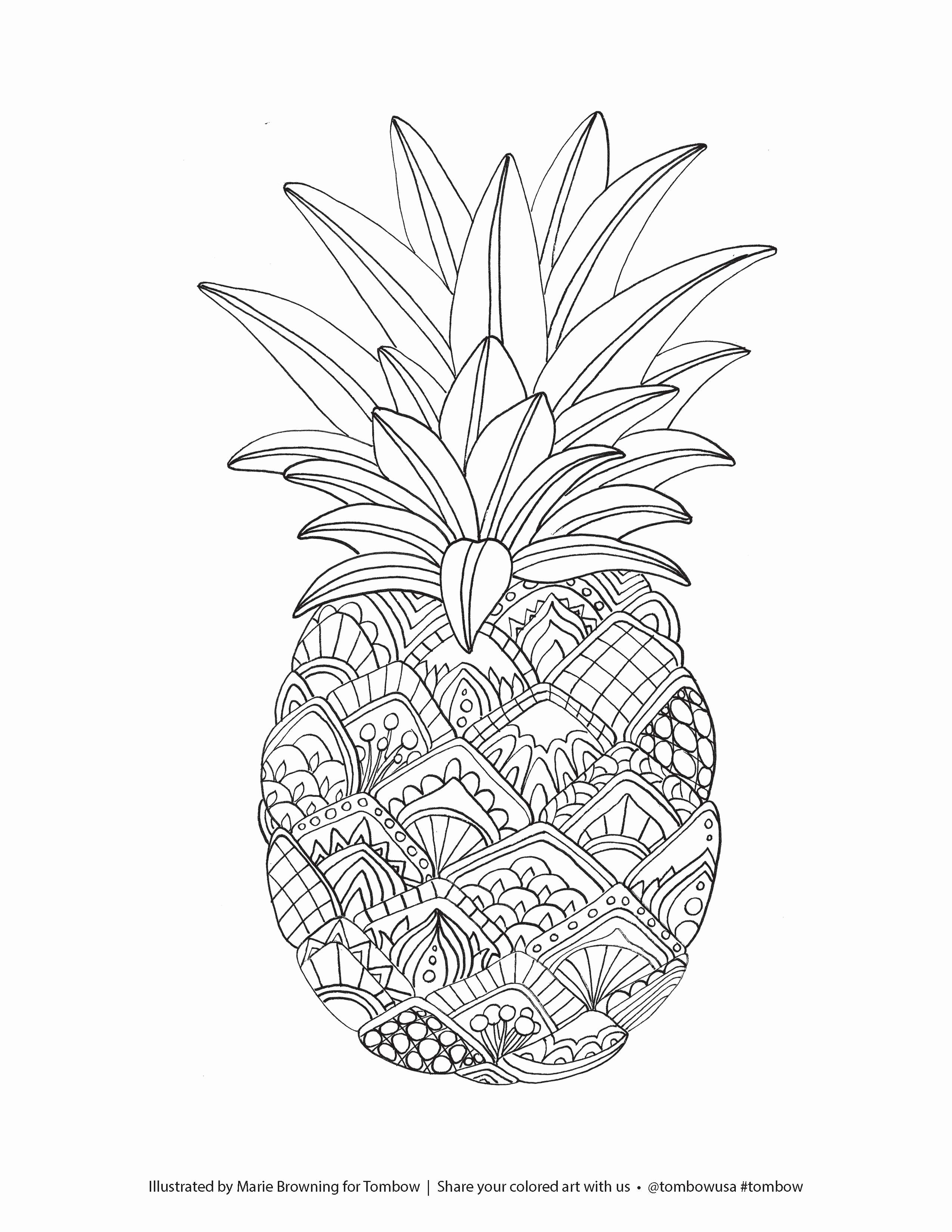 printable fruit coloring pages free printable fruit coloring pages for kids printable pages coloring fruit