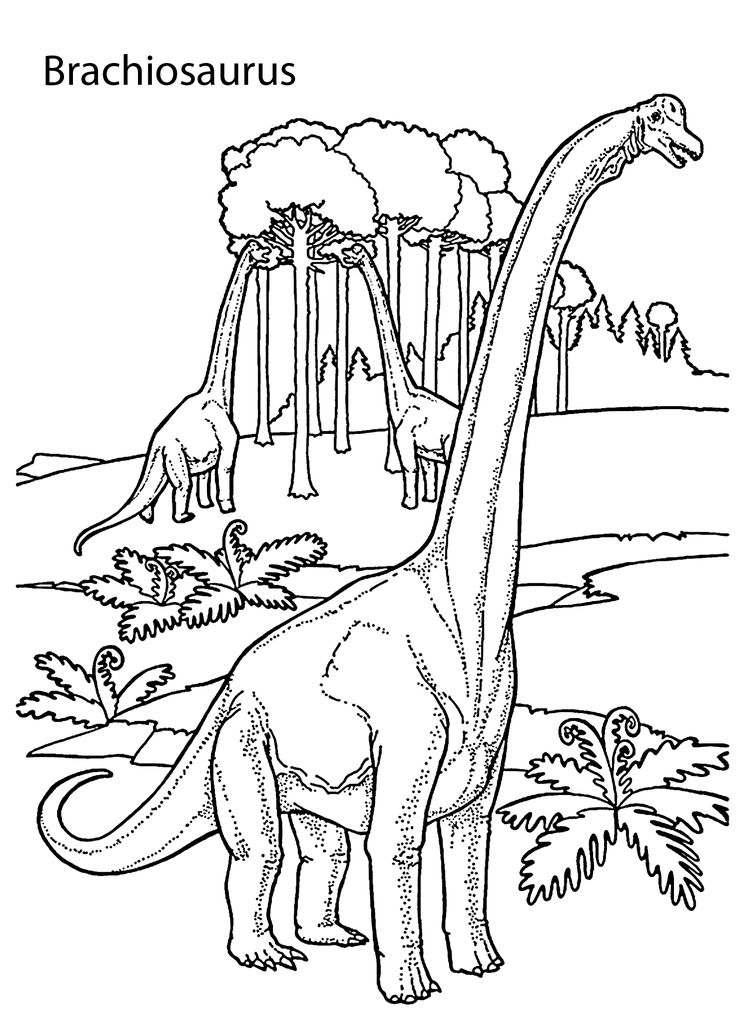 printable realistic dinosaur coloring pages raptor dinosaur coloring pages realistic t rex get realistic coloring dinosaur printable pages