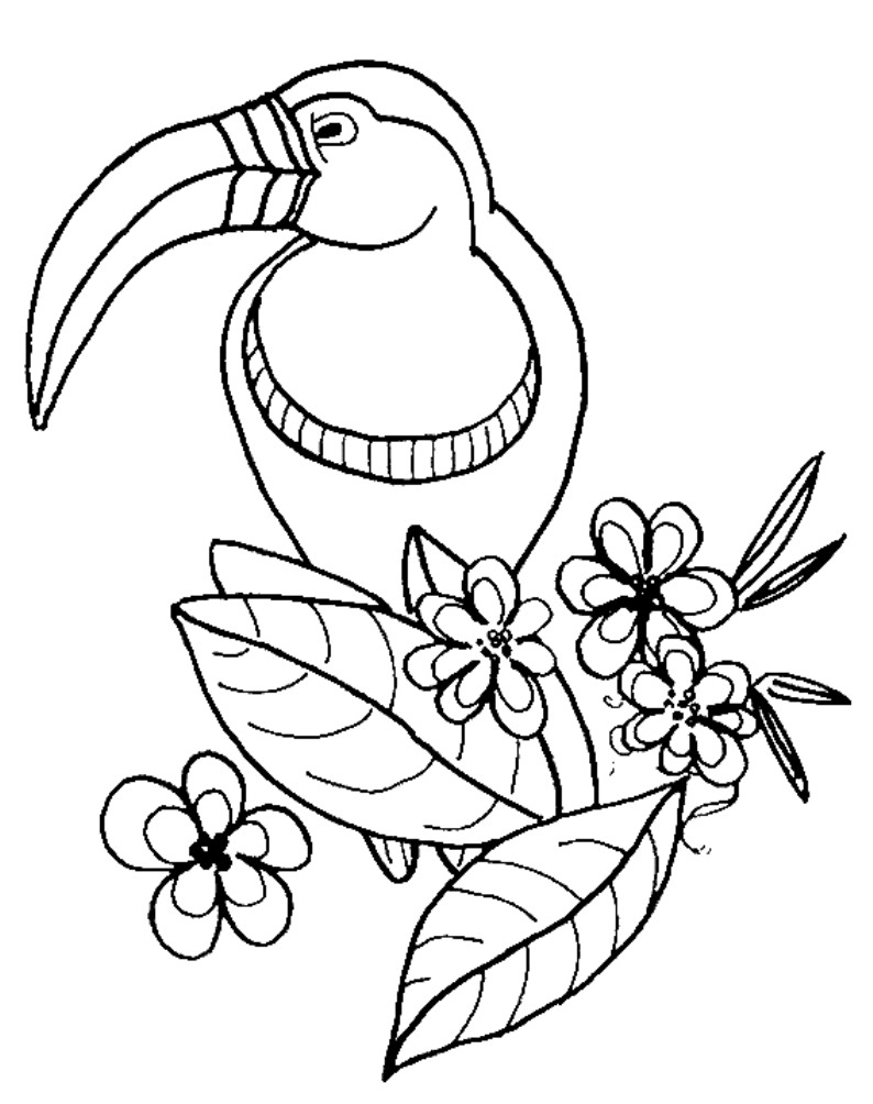 printable zoo animal coloring pages free coloring pages for kids zoo animals google search zoo pages printable animal coloring