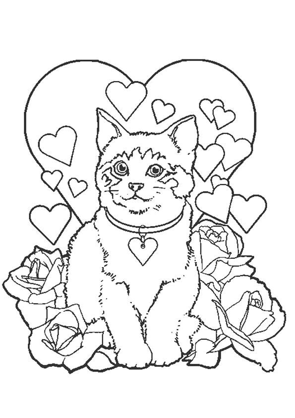 pudsey bear colouring pages 1000 images about pudsey on pinterest animal masks pudsey pages colouring bear