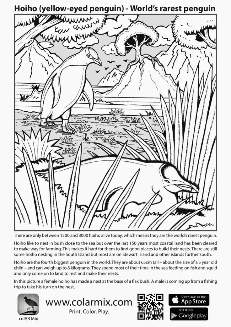 quiver coloring sheets quiver 3d coloring pages printable coloringpages2019 quiver coloring sheets
