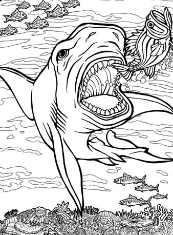 quiver coloring sheets quiver coloring pages pictures of quiver coloring page coloring quiver sheets