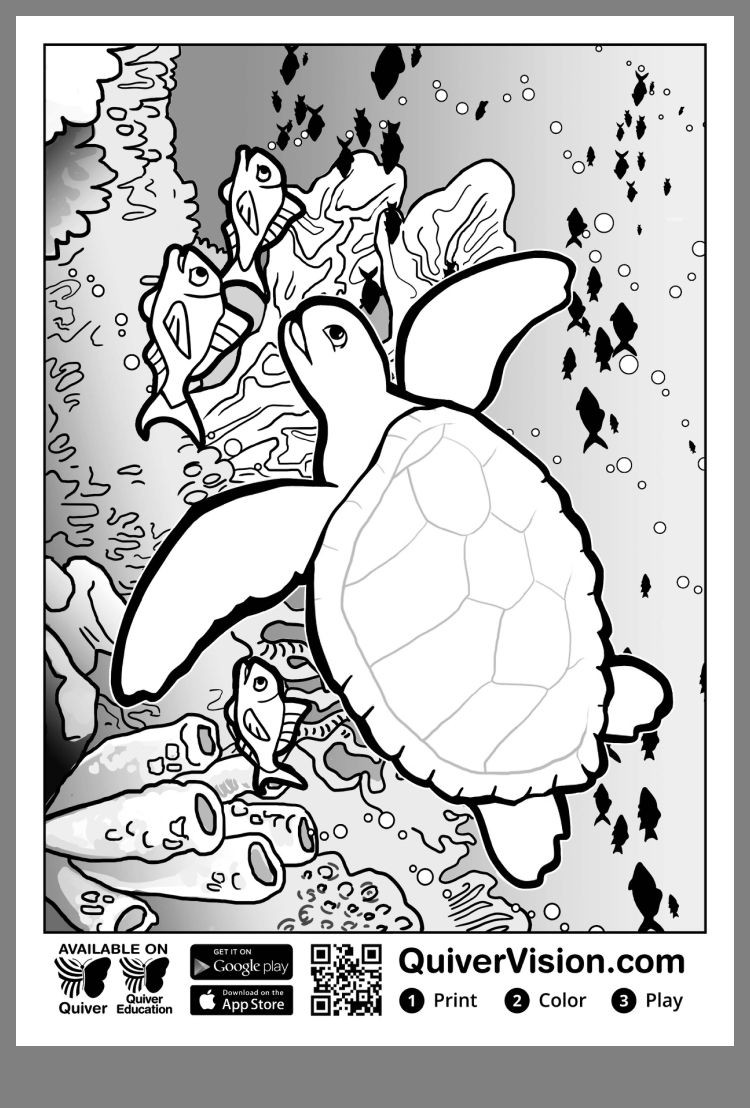 quiver coloring sheets quiver coloring pages worksheetpedia sheets quiver coloring