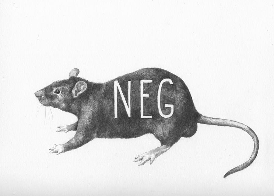 rat drawing how to draw a rat step by step drawing tutorials drawing rat