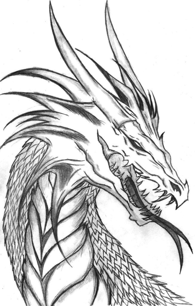 realistic dragon coloring pages realistic dragon coloring pages realistic dragon head realistic coloring pages dragon