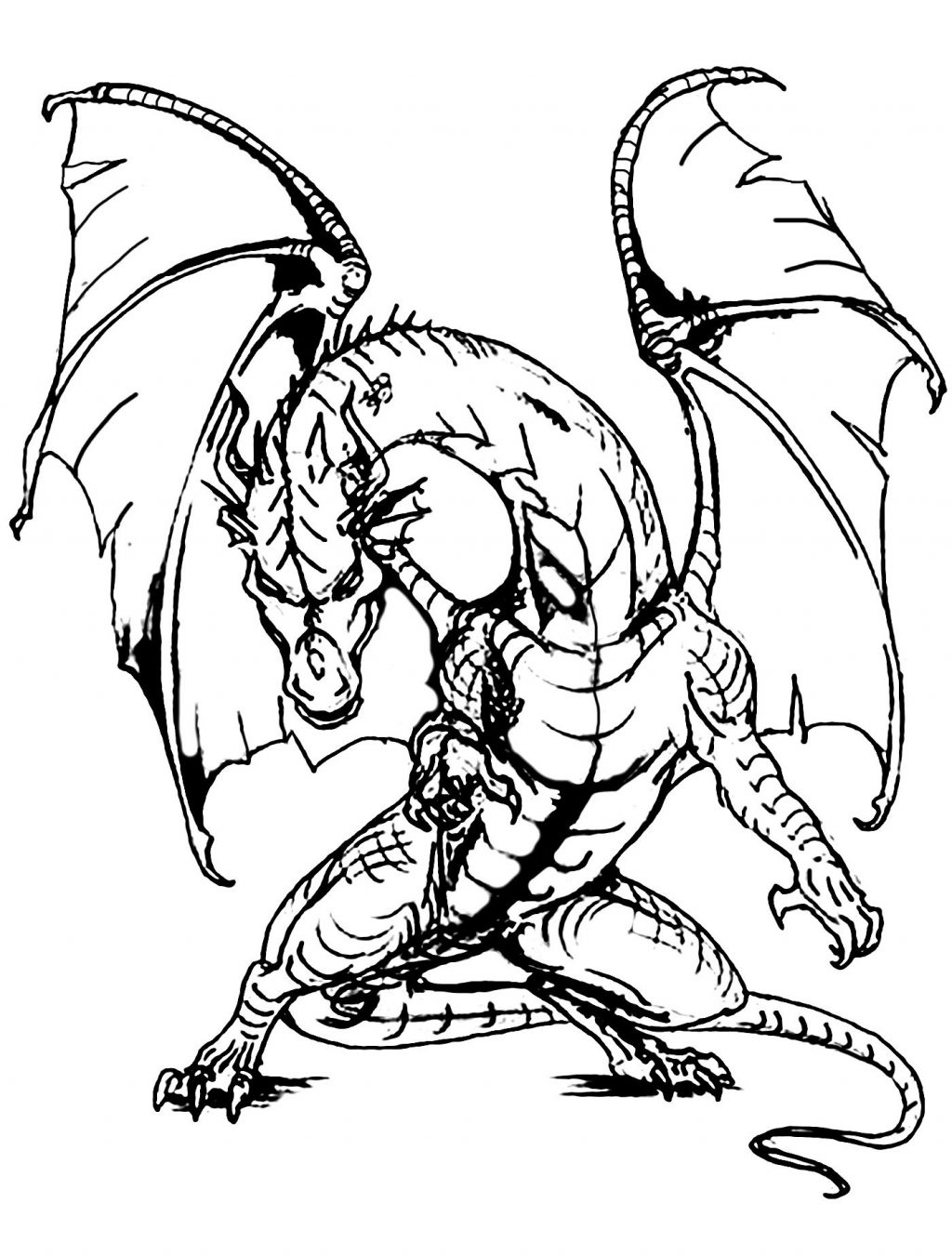 realistic dragon coloring pages realistic dragon drawing at getdrawings free download dragon coloring pages realistic