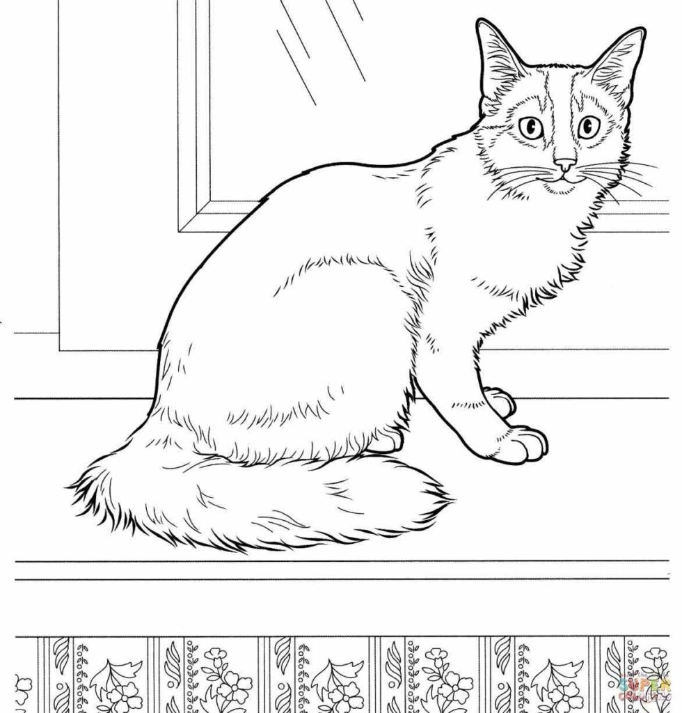 realistic house cat cat coloring pages cat on a house at night 2268 coloring pages printable pages house cat cat realistic coloring