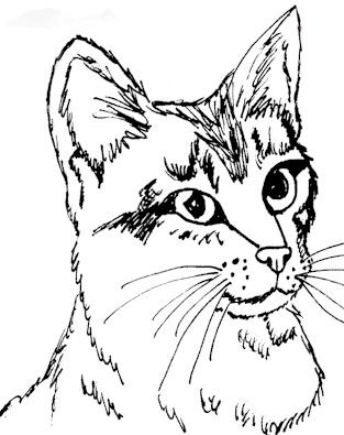realistic house cat cat coloring pages realistic cat coloring pages coloring home house coloring realistic pages cat cat