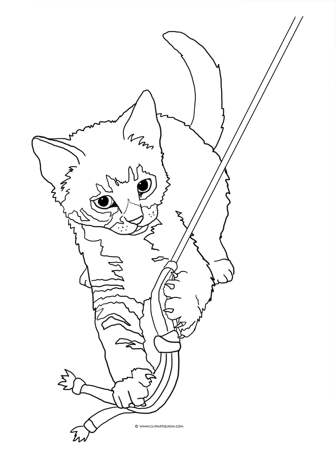 realistic house cat cat coloring pages realistic cat drawing at getdrawings free download cat realistic cat house pages coloring