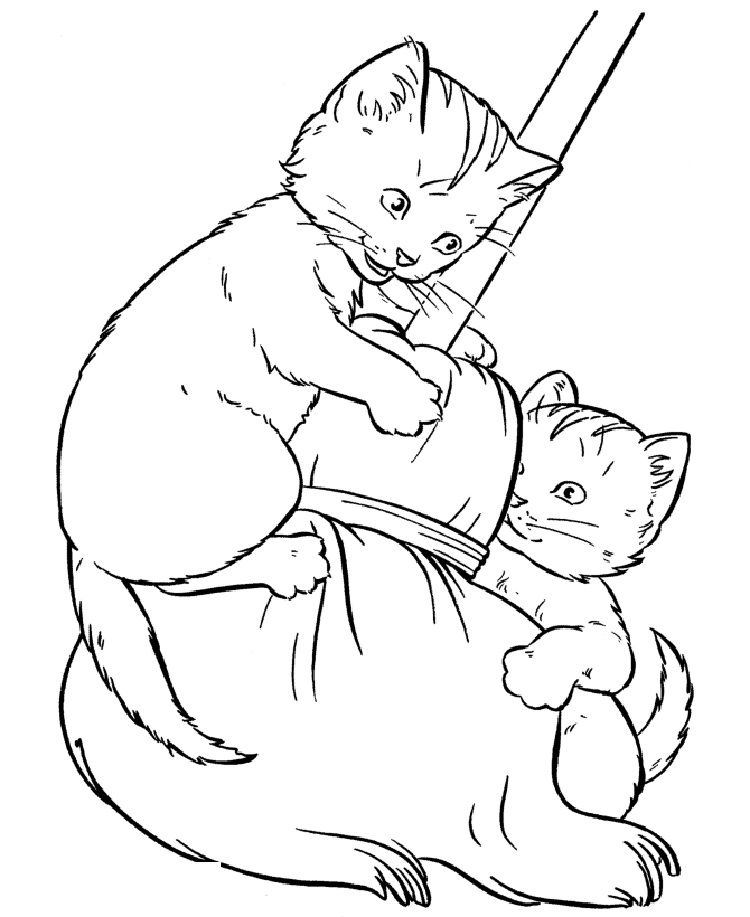 realistic house cat cat coloring pages selected realistic cat coloring pages luxury for adults house pages realistic cat coloring cat