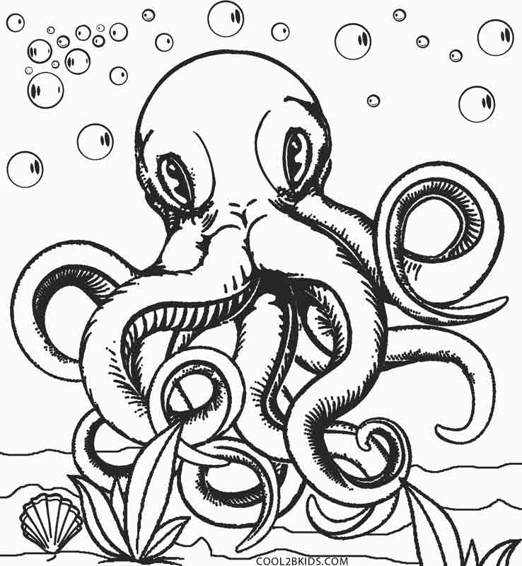 realistic octopus coloring page popular realistic octopus coloring page free printable realistic page octopus coloring