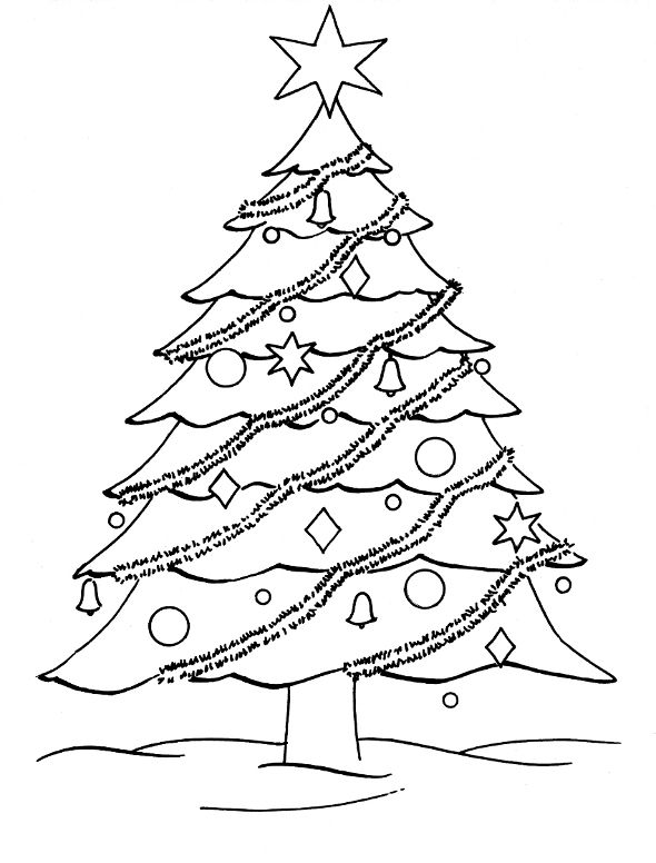 realistic tree tree coloring pages apple tree coloring pages downloadable and printable realistic pages tree tree coloring