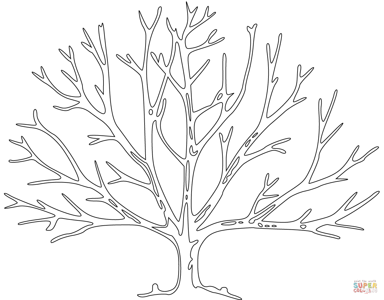 realistic tree tree coloring pages free printable tree coloring pages for kids realistic tree coloring tree pages