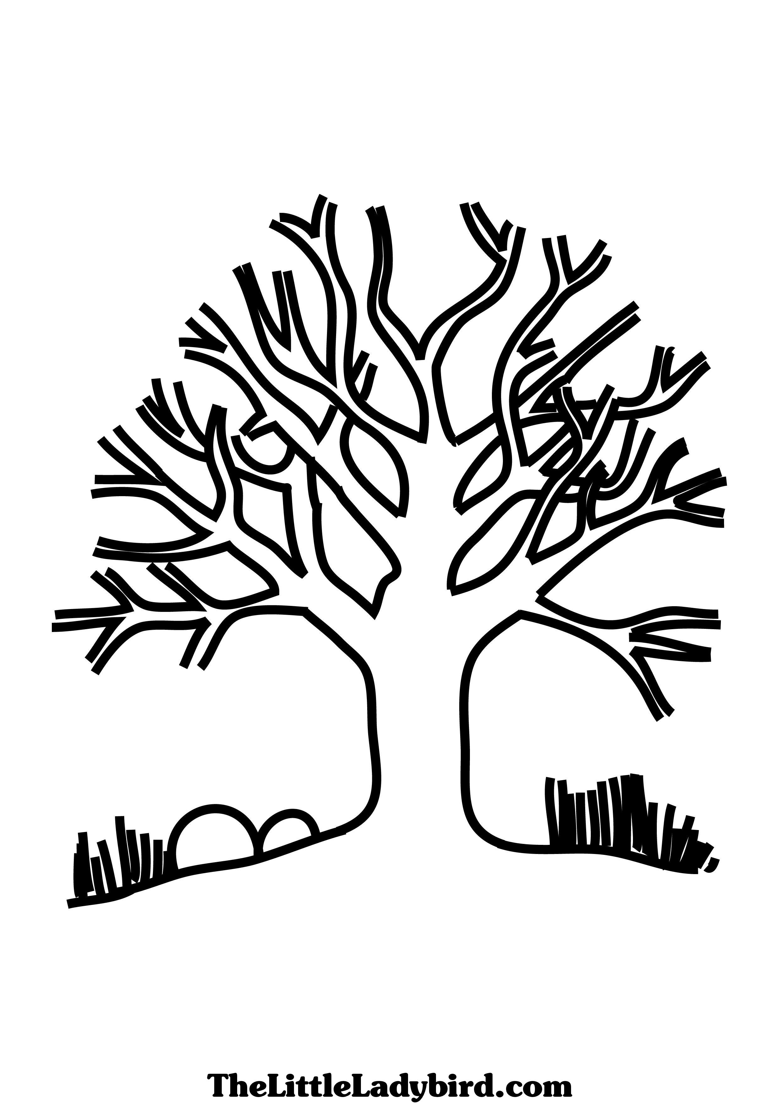 realistic tree tree coloring pages free printable tree coloring pages for kids tree realistic coloring pages tree