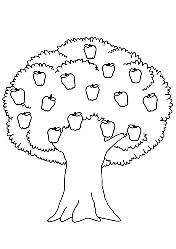 realistic tree tree coloring pages realistic apple tree drawing clipart panda free realistic tree coloring pages tree