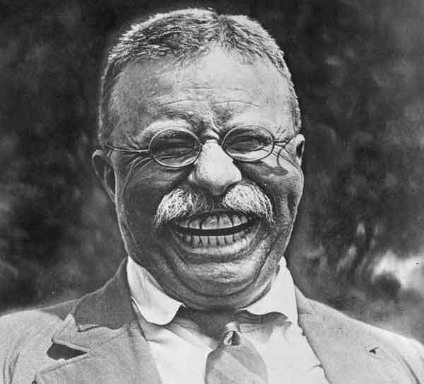 roosevelt caricature 56 brilliantly done american political caricatures caricature roosevelt