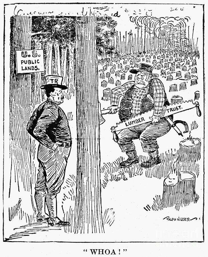 roosevelt caricature ants grasshoppers fdr in 1930s political cartoons roosevelt caricature