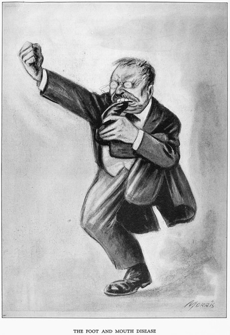 roosevelt caricature roosevelt cartoon 1912 n39the foot and mouth disease caricature roosevelt