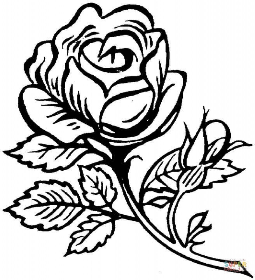 rose colouring pages rose coloring pages free download on clipartmag pages rose colouring