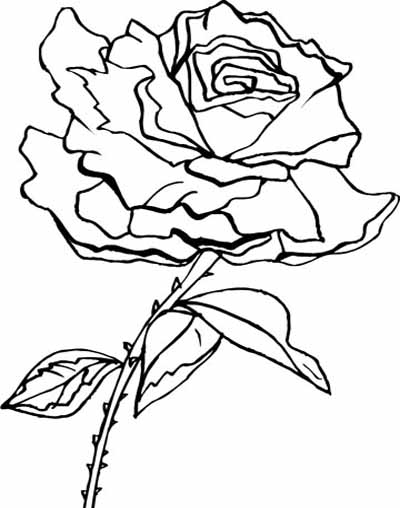 rose flower coloring pictures coloring blog for kids rose flower coloring page pictures coloring pictures rose flower