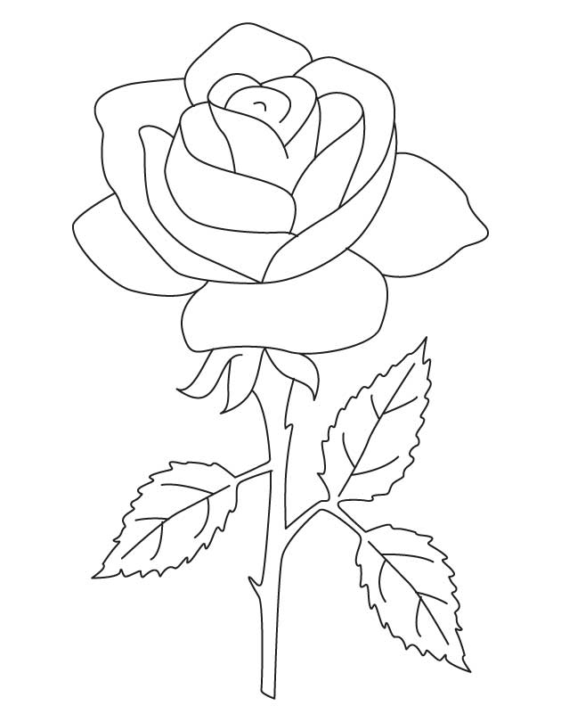 rose flower coloring pictures coloring blog for kids rose flower coloring page pictures coloring rose flower pictures