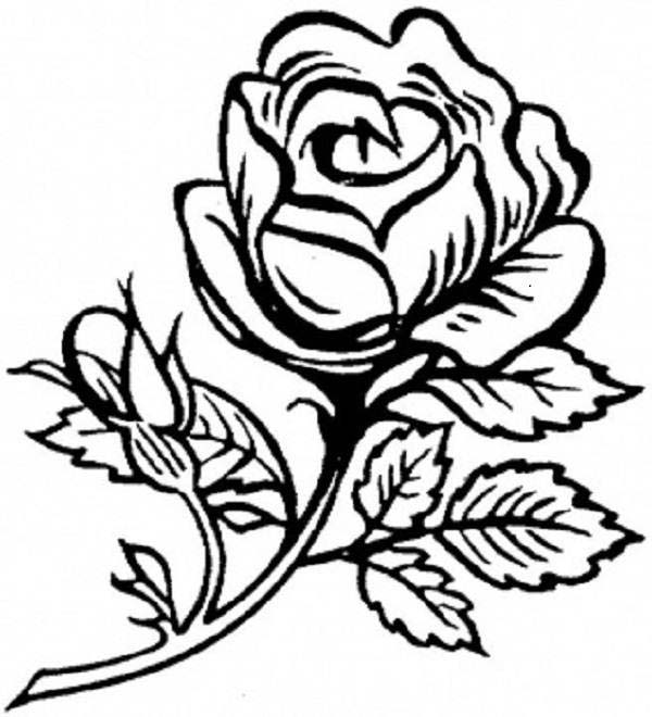 rose flower coloring pictures flower coloring page rose with leaves image coloring page coloring rose pictures flower