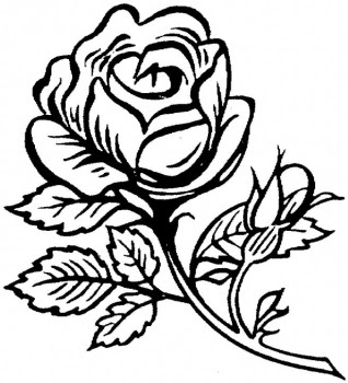 rose flower coloring pictures rose flower coloring page 082 coloring sheets flower pictures rose coloring