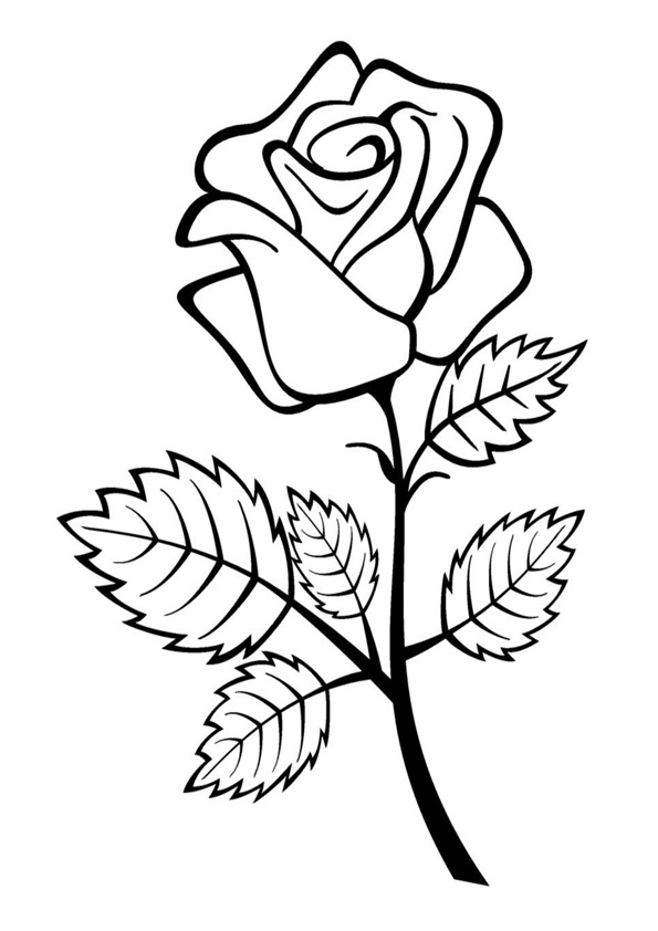 rose flower coloring pictures roses flower coloring page free coloring pages online rose flower coloring pictures