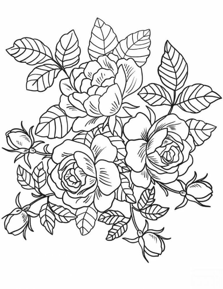 roses coloring pages printable roses flower coloring pages flower coloring pages free pages coloring printable roses