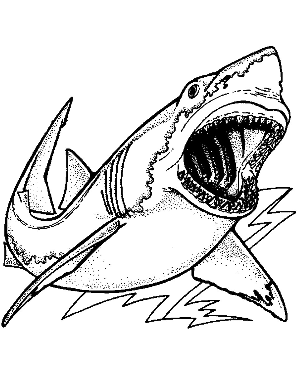 shark coloring pictures 33 free shark coloring pages printable shark pictures coloring