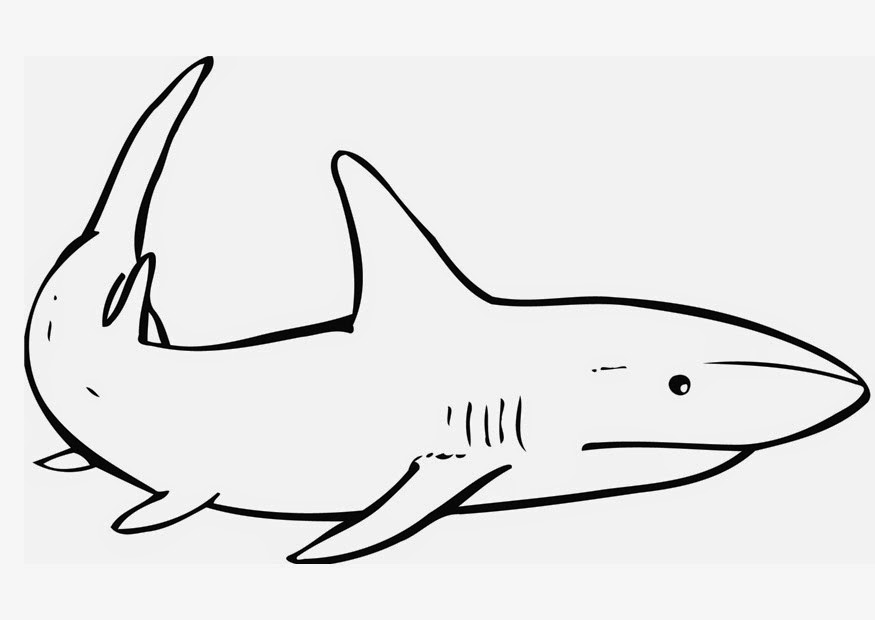 shark coloring pictures coloring pages shark coloring pages free and printable shark pictures coloring