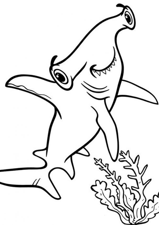 shark coloring pictures free shark color pages activity shelter shark coloring pictures