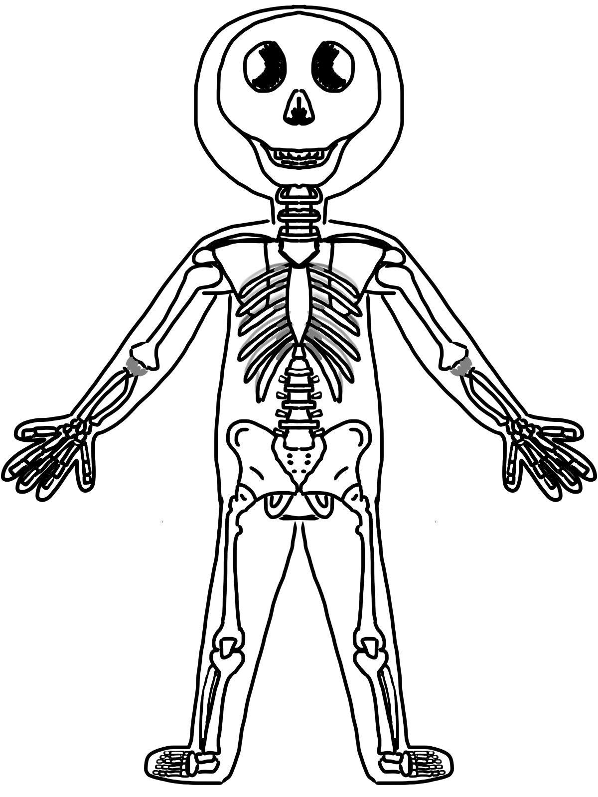 skeletal system coloring page skeleton coloring pages anatomy at getcoloringscom free coloring page system skeletal