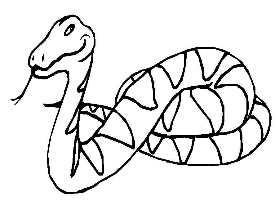 snake colouring pictures to print free snake coloring pages for adults printable to snake to pictures colouring print