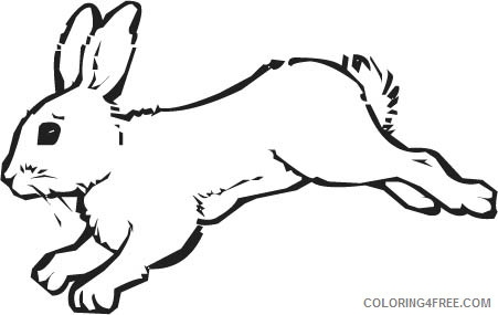 snowshoe hare coloring page snowshoe coloring pages at getcoloringscom free snowshoe coloring hare page