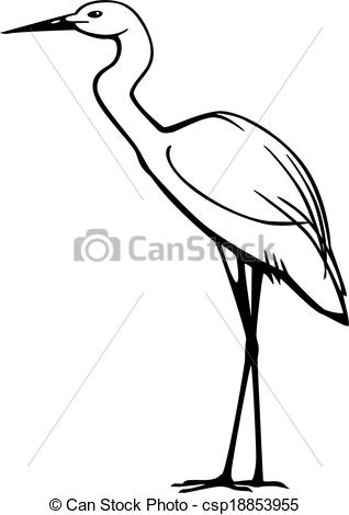 snowy egret drawing best great egret illustrations royalty free vector drawing snowy egret