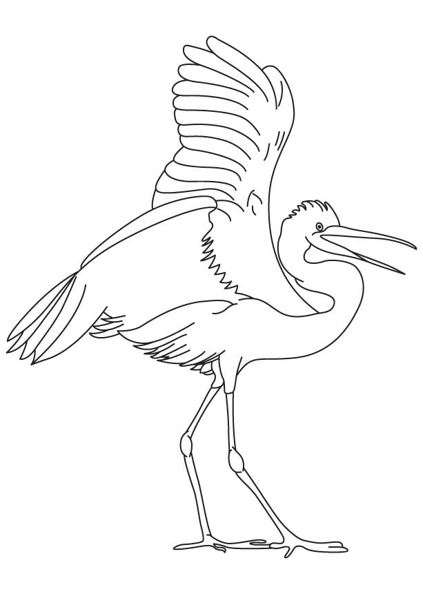 snowy egret drawing egret illustrations and clipart 663 egret royalty free drawing egret snowy