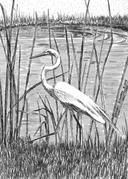 snowy egret drawing sketcharound making handmade books by beckett snowy drawing egret