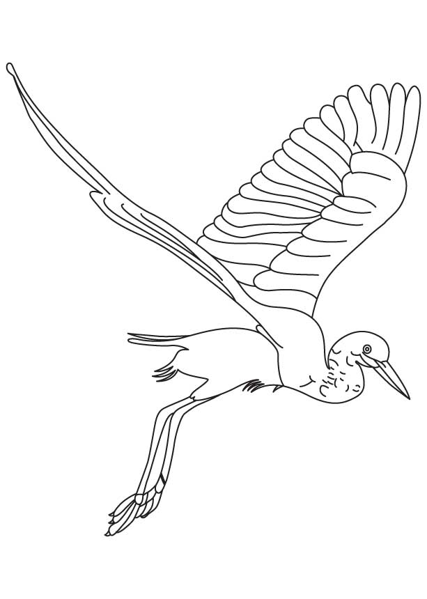 snowy egret drawing snowy egret coloring pages drawing snowy egret