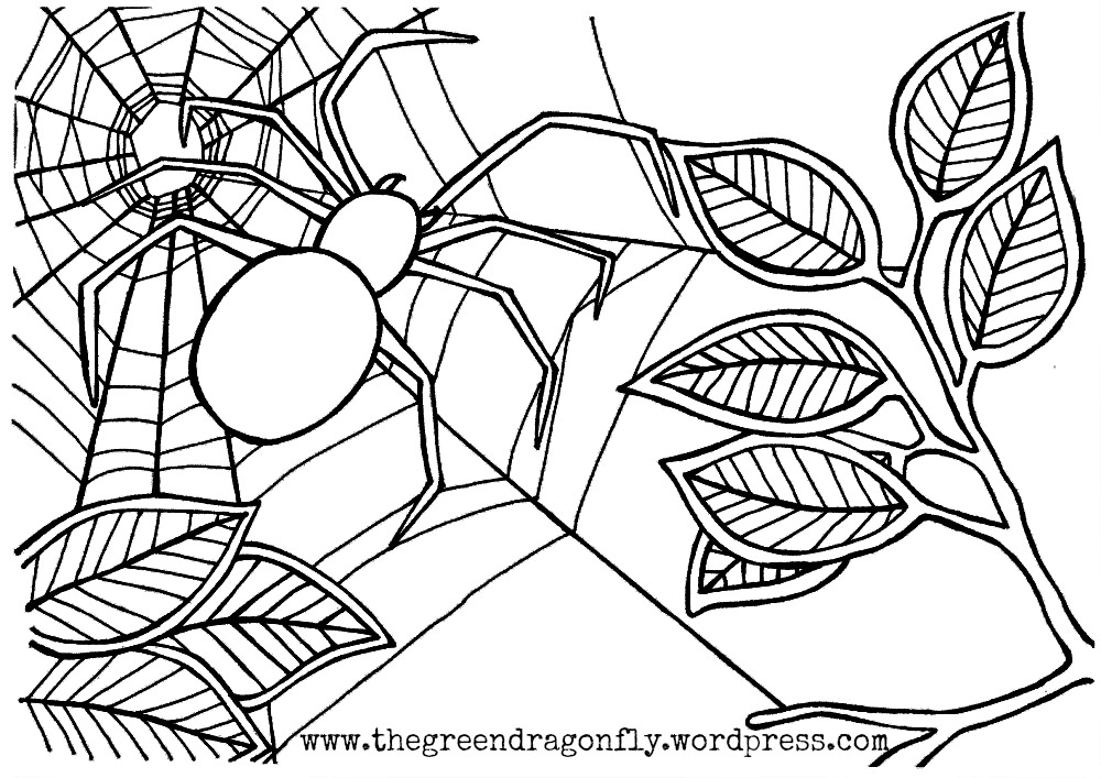 spider coloring page spider coloring pages to download and print for free coloring spider page