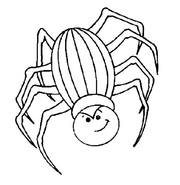 tarantula coloring pages angry spider coloring page netart tarantula coloring pages