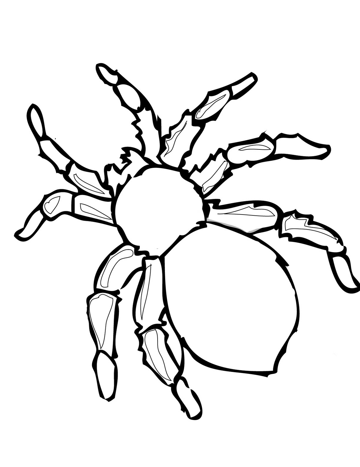 tarantula coloring pages halloween spider coloring pages at getcoloringscom free tarantula pages coloring