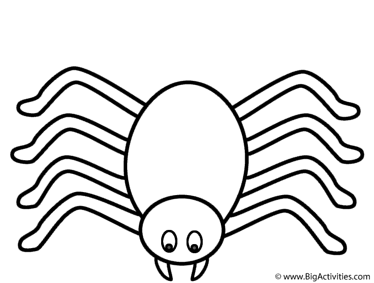 tarantula coloring pages spider clouring free colouring pages coloring tarantula pages