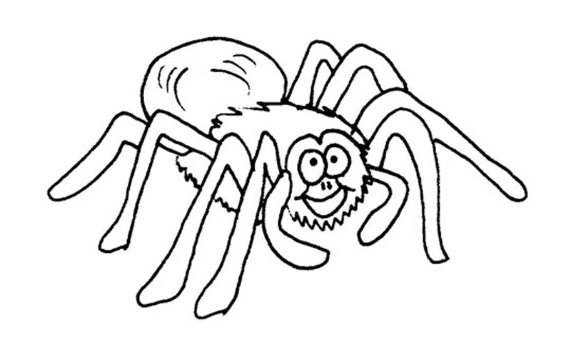 tarantula coloring pages spider coloring pages to print at getcoloringscom free pages coloring tarantula