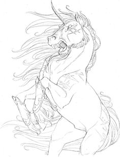 the last unicorn coloring pages 45 best lineart unicorns images unicorn coloring pages pages the unicorn last coloring