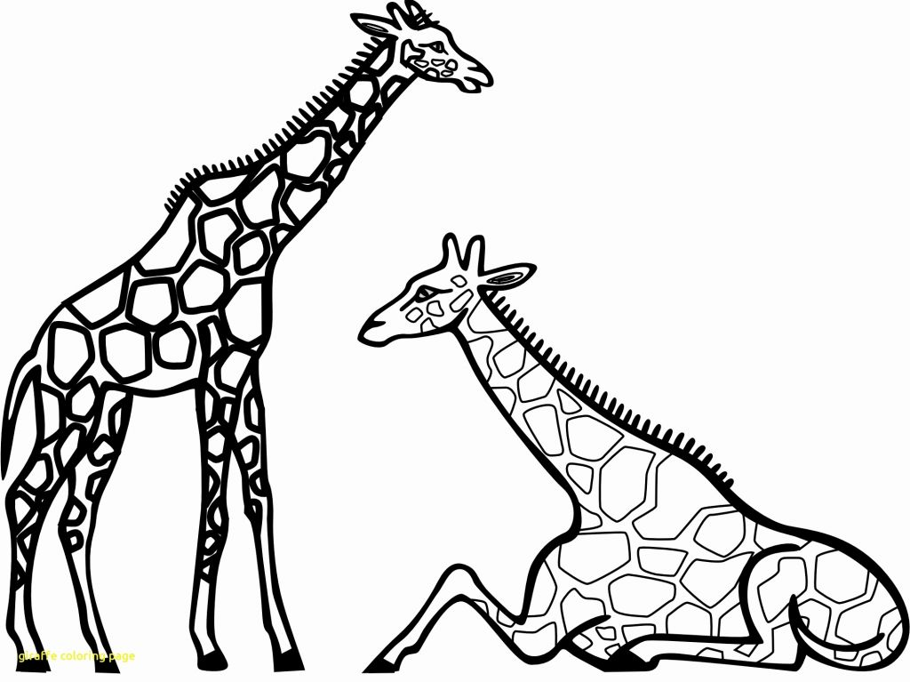 the last unicorn coloring pages the last unicorn coloring pages at getcoloringscom free the last unicorn pages coloring 1 1